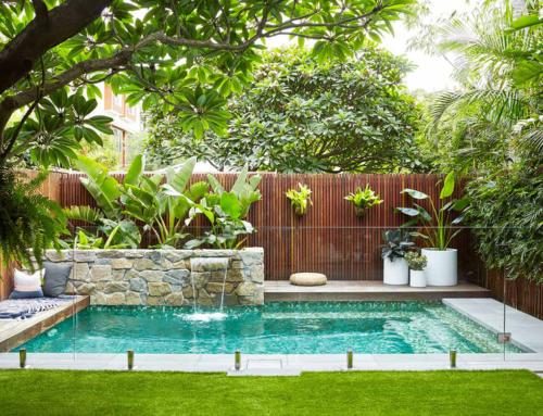 Tem árvores perto da sua piscina? Saiba quais deve evitar!