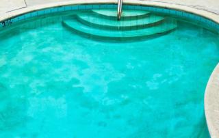 algae_in_a_pool_x2