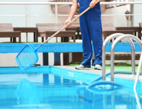 Saiba como fazer a limpeza de Outono da sua piscina!